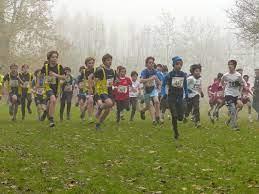 世界陸連がクロスカントリー、混成競技、競歩のワールドツアー競技構成を発表